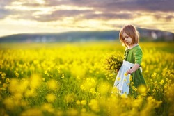 A little pretty girl in a green Bavarian dress with a white apron picking flowers in the field of flowering yellow mustard on a sunny summer  day. Kids and nature. Children in country. Beautiful flora