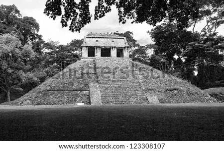 A little pyramid in Palenque - Mexico (black and white)