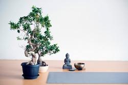 A little 'zen corner' in a yoga class.
