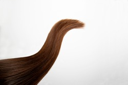A lock of long, thick hair. The color is dark brown. A strand of natural female hair on a white background. Chestnut color. Hair care.