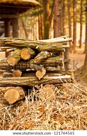 a log lumber in the wilds