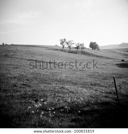 a lomography of a beautiful landscape - stock photo