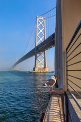 A lone seagull stands before the Bay Bridge shrouded in fog along the Embarcadero along the San Francisco waterfront. USA