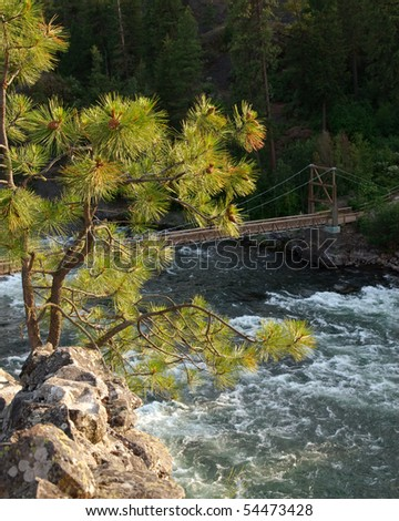 A lone tree clings to the cliffs overlooking the bridge at the Bowl and Pitcher State Park, Spokane, Washington