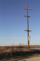 A lone, Wooden Utility pole in field