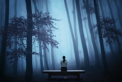 a lonely girl sitting on a bench in a foggy jungle