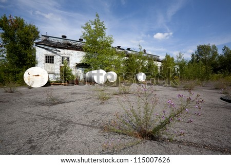 A long ago abandoned industrial site now beginning the long process of nature reclaiming the land.