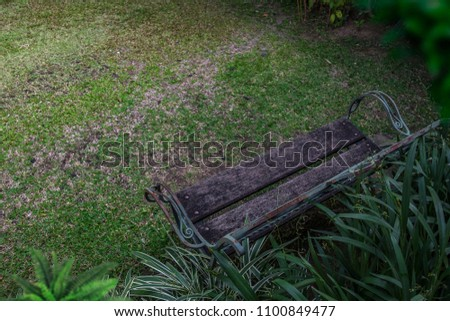 A long chair for relaxing under a tree in a lush garden on a lush green lawn. #1100849477