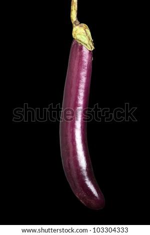A long eggplant against a black background