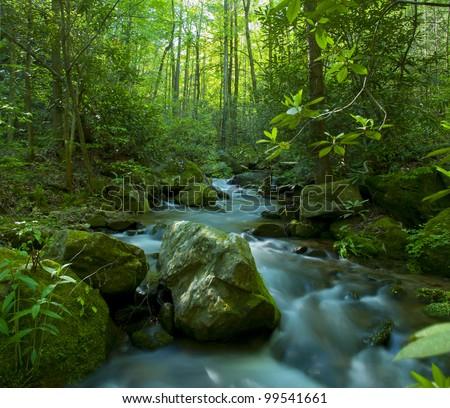 A long exposure of Falls Creek in the Mountain Bridge Wilderness area on the Blue Ridge Escarpment.
