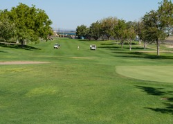 a long shot of a gold course with two golf carts and people in the distance