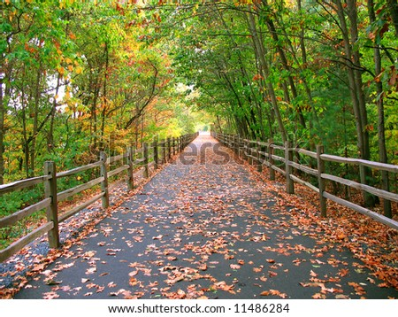 A long, wooded trail that goes through the woods in Connecticut - this one is used by cyclists, skaters, and even walkers. In the past it was an old railway line with railroad tracks.