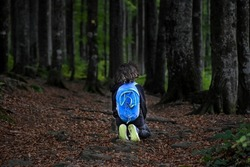 A lost little boy alone in the forest, backpack,  loneliness, parents, mystic, magic, mystery, fear, fearless, help line, assistance, sos,  in the middle of the woods, mysterious, right path, waiting