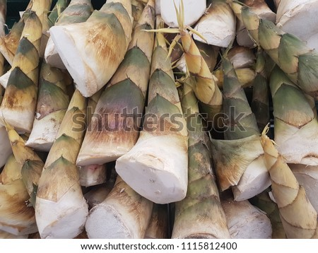 A lot of bamboo shoot in the stall at the market. Natural ingredient concept.