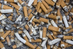 A lot of Cigarette butts. smoke dangerously for healthy .reason of lung cancer.