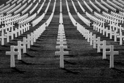 A lot of crosses