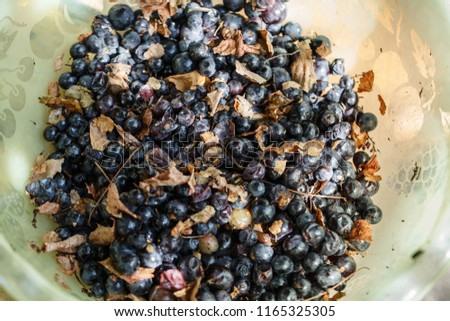 a lot of crushed grapes in a bowl, preparation for making grape juice, grape separation from the grape