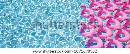 a lot of flamingo floats in a pool. 3D rendering