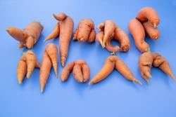 A lot of fresh carrots of unusual intrecing shape lies on a blue background.