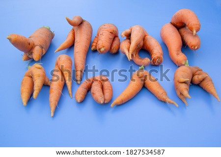 A lot of fresh carrots of unusual intrecing shape lies on a blue background. Foto stock ©