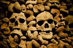 a lot of human bones