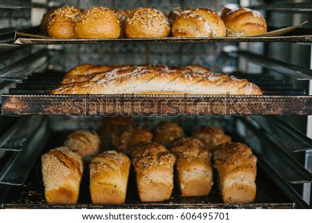 A lot of ready-made fresh bread in a bakery oven in a bakery. Bread making business. Fresh bread from cereals with seeds from a bakery. Healthy and nutritious food. The product contains carbohydrates. #606495701