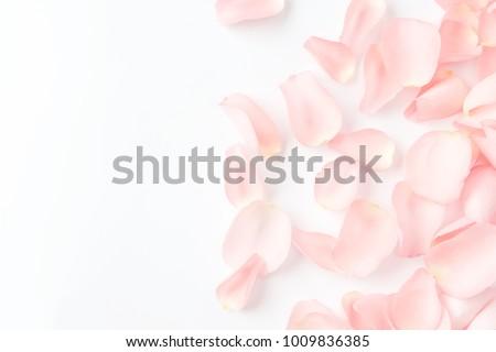 A lot of rose petals.