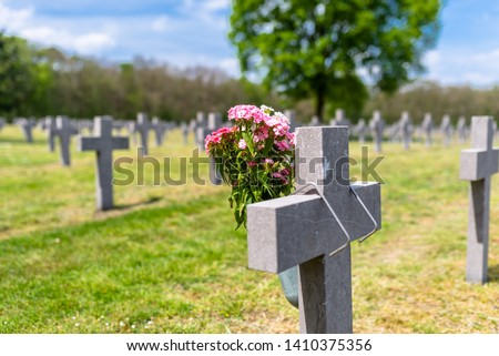 A lot of small, concrete crosses at the German war cemetery in the Netherlands.  Foto stock ©