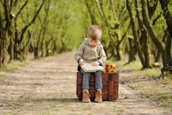 A lovely boy sitting on the box in avenue of threes and reading a  book at the springtime.