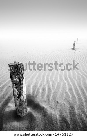 A low tide on a sandy beach