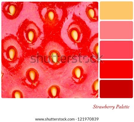A macro shot of a fresh, juicy strawberry. Colour palette with complimentary colour swatches