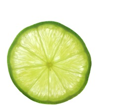 A macro shot of a lime-slice