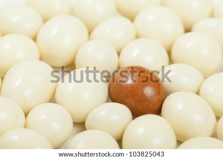 A macro shot of a milk chocolate covered espresso bean surrounded by white chocolate espresso beans. Shallow Depth of Field.