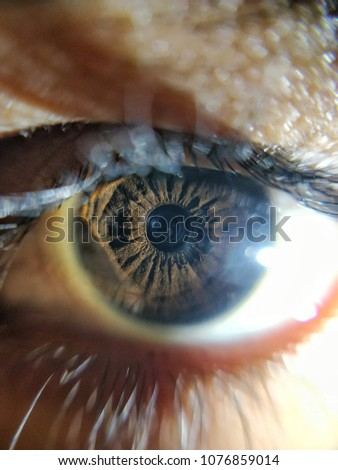 A macro shot of an eye. Close up pic if an eye.
