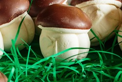 A macro shot of original marshmallow sweets in the form many delicious mushroom. Brown-white boletus. Original sweets from the grocery store.