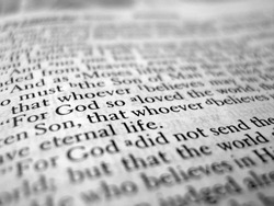 A macro shot of the Bible at John 3:16.