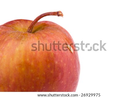 A maggot comes out from rotten apple