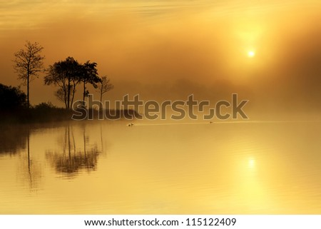 A magical moment on the shores of Loch Ard as the Sun tries to break through the mist, with trees reflecting in the still water. Stirlingshire, Scotland