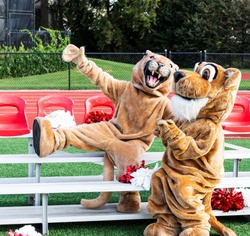 A male and female cougar mascots fool around for the camera while sitting on small portable bleachers