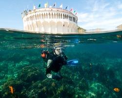 A Male Teenager Scuba Diving at Catalina Island, California