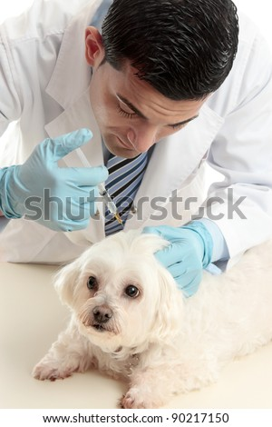 A male vet inserting a needle syringe into the back scruff of a pet dog's neck