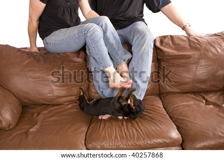 A man and a woman playing with the puppy on the couch by playing with the puppies feet.