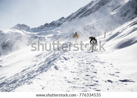 A man and his dog are walking in the cold alpine winter #776334535