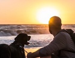 A man and his dog watching the sunrise at the beach.