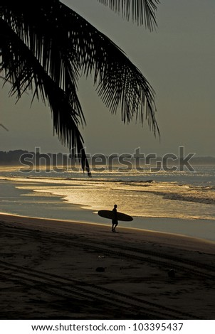 A man carrying his surfboard to the beach for early morning waves