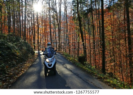 A man drives an MP3 scooter down a street in autumn. Motorsport in the autumn forest