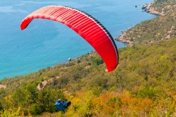 a man flies on a paraglider over a mountain in greenery and a blue sea on a clear summer day