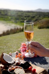 A man holding a champagne glass with a gourmet platter, sand and grassland in frame