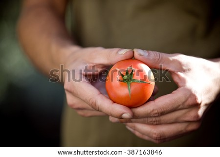 A man holding a tomato, close-up