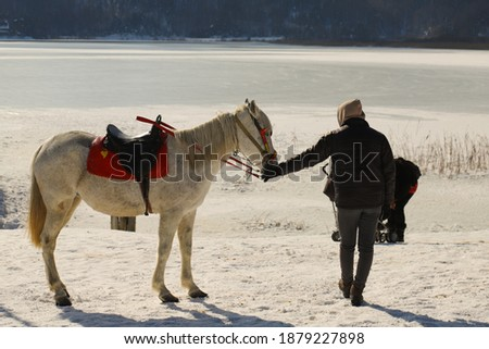 a man holding the horse  in lake abant Stok fotoğraf ©